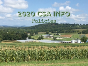2020 CSA Announcements