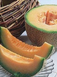 Burpee Hybrid Cantaloupe