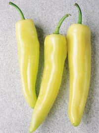Inferno Hybrid Hot Pepper