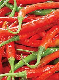Cayenne Hot Pepper